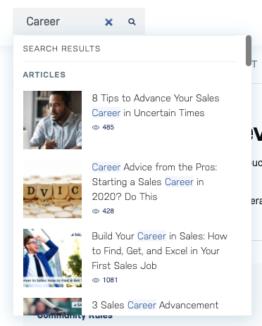 Sales Hacker Algolia search result for the word Career